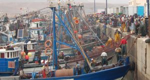 تحذير..لمهني الصيد في السواحل الممتدة من أكادير الى الصويرة