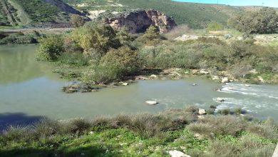 صورة شبكة تدق ناقوس الخطر حول الوضعية البيئية لنهر أبي رقراق