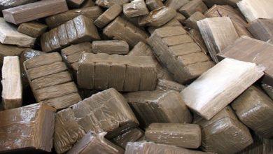 صورة أمن طنجة ينجح في تفكيك شبكة دولية لتهريب المخدرات