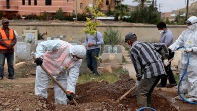 """صورة 8 جهات مغربية تتغلب على شبح """"موتى"""" كورونا"""