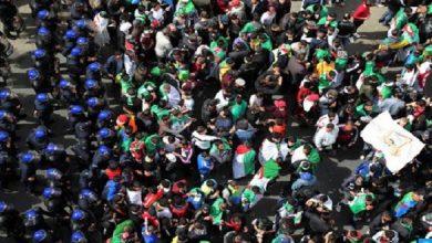 صورة الجزائريون يتحدون القمع ويخرجون في مسيرات الجمعة 117 للحراك الاحتجاجي الشعبي