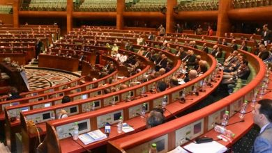 صورة قرار البرلمان الأوروبي ينافي روح وفلسفة الشراكة الوثيقة بين المغرب والاتحاد الأوروبي