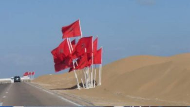"""صورة """"إعادة التفكير في نزاع الصحراء"""" مؤلف يحمل الجزائر مسؤولية النزاع حول الصحراء المغربية"""