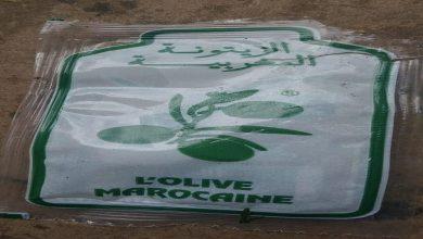 صورة حجز زيوت مشبوهة في الدار البيضاء